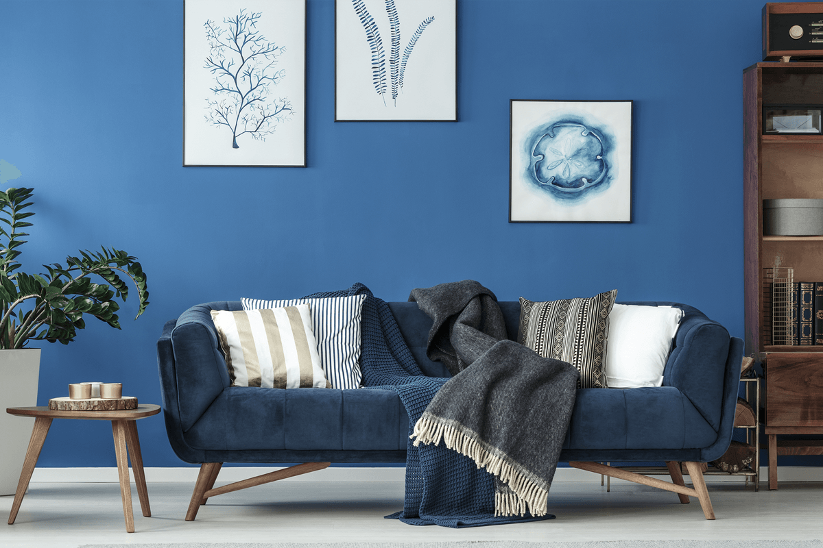 5 Easy Ways to Make Your Sofas Irresistible