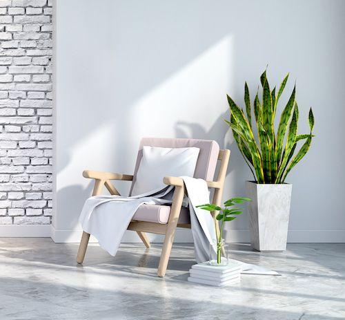 All-White Interior Design – Break Up With Greenery