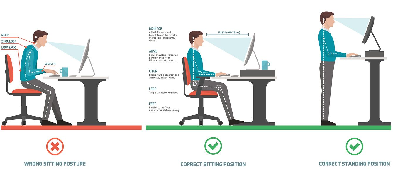 Optimum screen position for standing or seated work