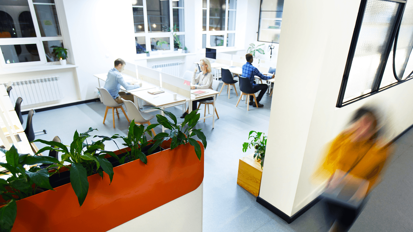 Open Office or Private Workspace Design: Which One Is Better?