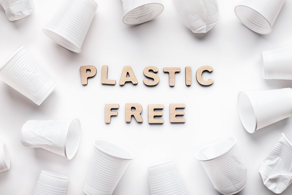 Interior Design Solutions for a Plastic-Free Office